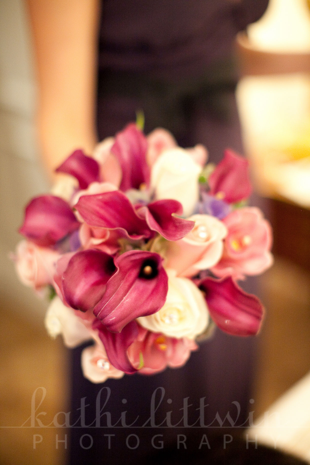 Kathi_Littwin_Photography_Plaza_NYC_Wedding-2013